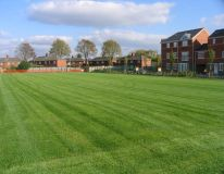 Dashwood Primary school at Banbury, the new school playing field is only 7 weeks old but looking thick and lush following first cut & collect.