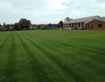 Lincoln gardens primary school playing field. Picture taken only 6 weeks from re-seeding. The old surface was ploughed under, levelled, stone buried and seeded. Summer 2014, ready for used again Spring 2015.